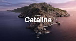 Image result for catalina macos